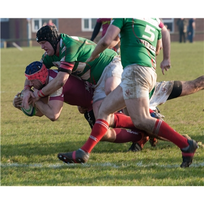 1st XV 43 v 19 Cheshunt RFC - Home League on 18 Feb 2017
